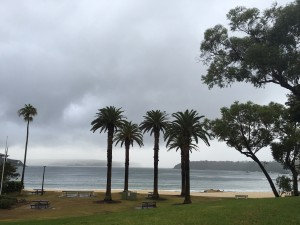 Balmoral Beach and the Heads on a blustery Day