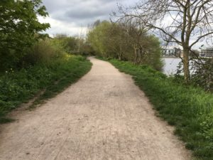 Transformation: from city path to rural trail, close to Barnes. Perfect daschund walking territory!