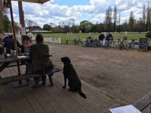 Labradors and village cricket .. perfect place to stop for lunch