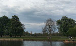 Magdalene tower across the meadows