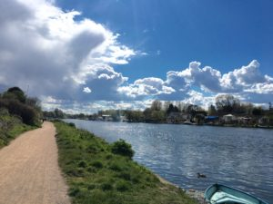 Placid afternoon Thames
